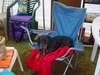 Camp_004